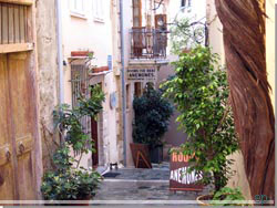 Anemones. Rooms for rent i Chania